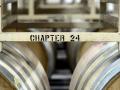 Chapter 24 Vineyards - image 03.jpg