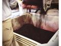 Jovino Oregon Wines - image 04.jpg
